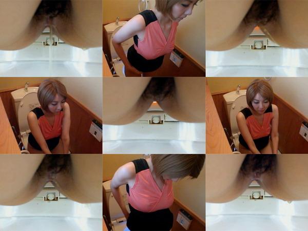 Hiroshi Toilets dwt001_0340_01